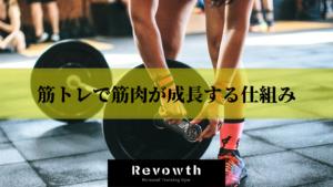 筋トレで筋肉が成長する仕組み